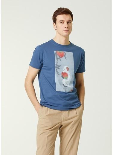 Lardini Lardini  Hayvan Baskılı T-shirt 101627550 Mavi